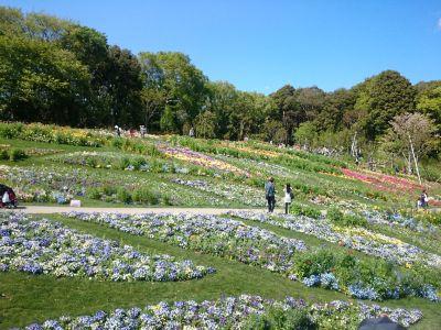 satoyama garden1